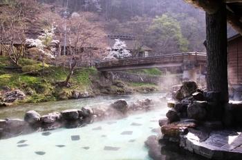 桜温泉2.jpg