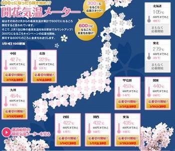 桜開花600度.jpg